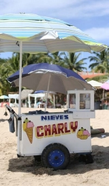 <h5>Ice cream vendor</h5><p>Need something cold while on Chacala Beach?  This vendor can help.</p>