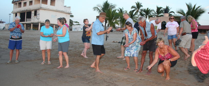 Guests at Casita Release 13 Turtles at sunset.